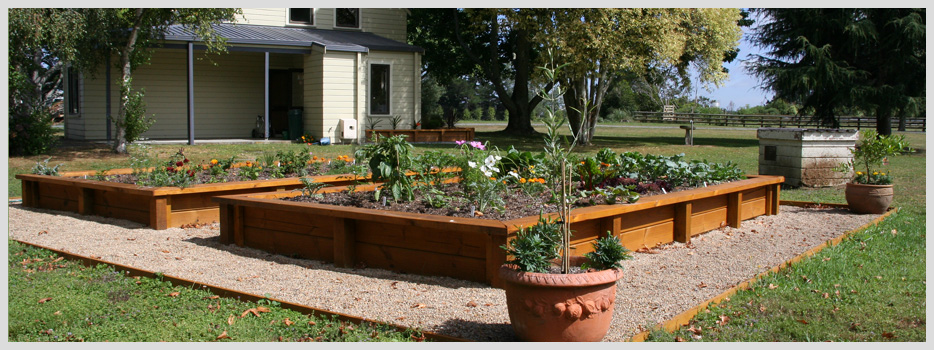 Rural property raised vegetable garden - speciality Features, Higher Ground Landscapes Hamilton